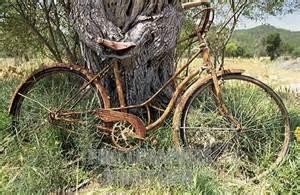 How I'm afraid the neighbors see the bike