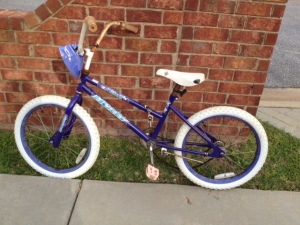 My daughters' bike--about twelve years old. Many a happy mile has been ridden with this one.