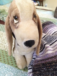Bogart, many years after he entered my life, a little flatter but no less loved.  He needed a little help standing up, so I used this blanket--another gift of comfort.