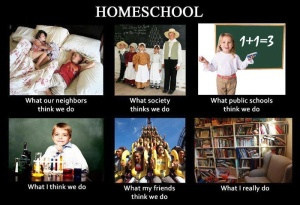 Hi, I'm a homeschool Mama, and only one, well okay, two of these may be accurate.  Don't ask me which ones.