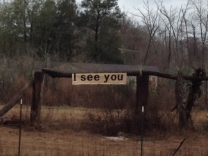 pic of i see you
