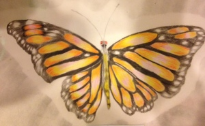 Mac's butterfly.  We were so hoping for his own transformation, leaving behind his old life.