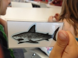 Cooter drew a shark in the Habitat game.  He grinned really big and gave me a thumbs up.  He knew where to put this one.