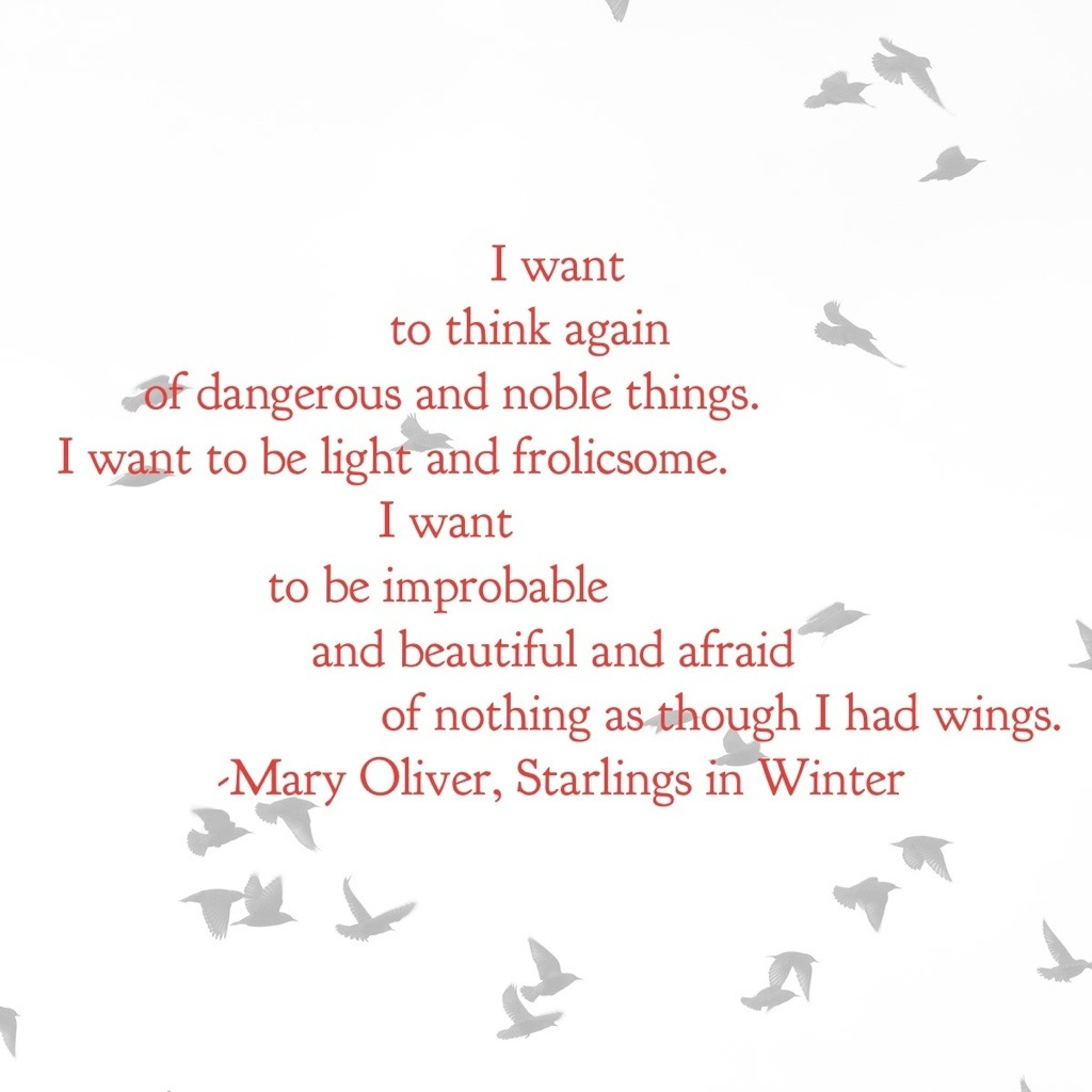 Mary Oliver Love Quotes Cardinals And Starlings And Remembering When  I Might Need A Nap