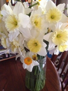 Is there anything prettier than daffodils in a Mason jar?  Not today there's not.  My Aunt let us come gather some to bless the shower with.  And aren't they lovely?
