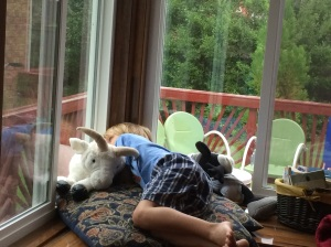My little guy curled up with Maemae's goat, staring out at the rainy day.