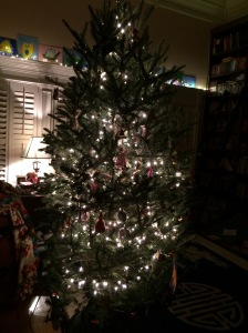 That tree--INSIDE the house with lights all over it!  Have you ever heard of such?