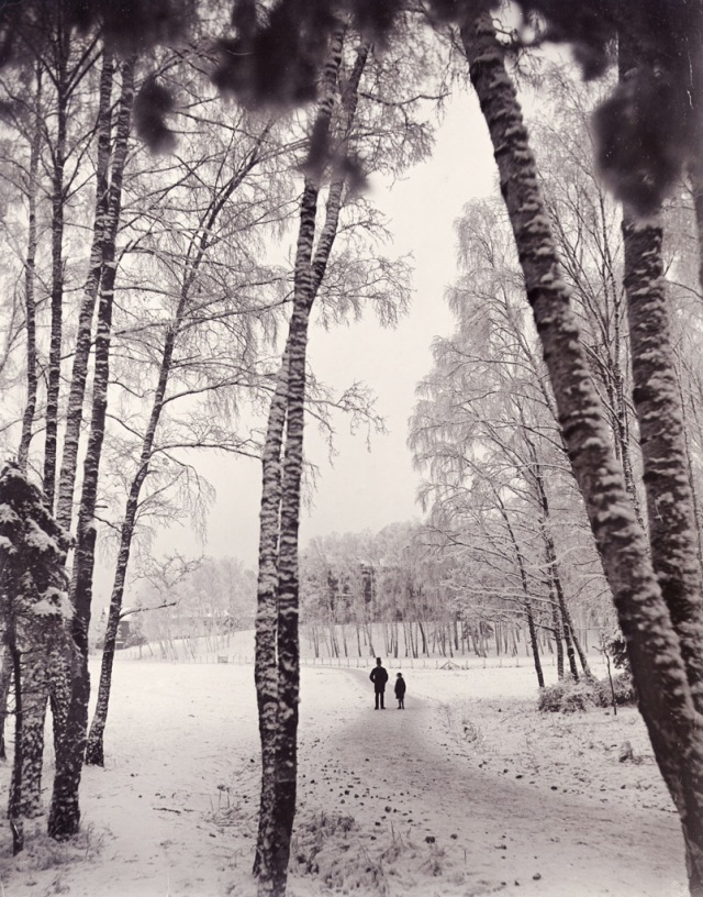 Thankful for Aub's godfather who helps guide her on her path.   (A walk in wintry woods, Stockholm, Sweden) via Wikimedia Commons